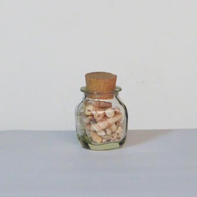 E17-2-10-tarro-cristal-tapon-corcho-caracolas-en-interior