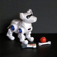 Ref.E11.3.2.perro-robot