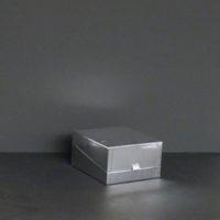 caja-carton-plateada