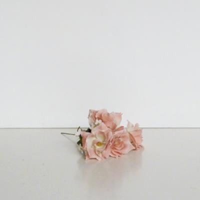 cuatro-rosas-rosa-palo