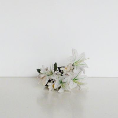 ramo-flores-estrella-blancas-margaritas