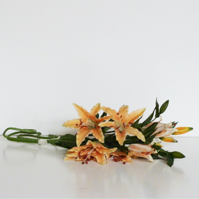 ramo-flores-estrella-naranjas
