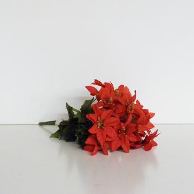 ramo-flores-estrella-rojas